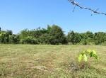 land-sale-chiangmai-ls85 (6)