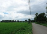 land-sale-chiangmai-ls51 (1)
