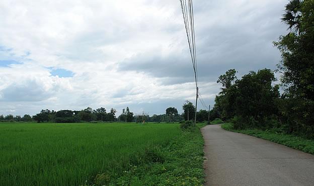 land for sale in San Sai
