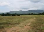 land-sale-chiangmai-ls72 (3)