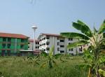 land-sale-chiangmai-ls78 (7)