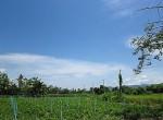 land-sale-chiangmai-ls81 (5)
