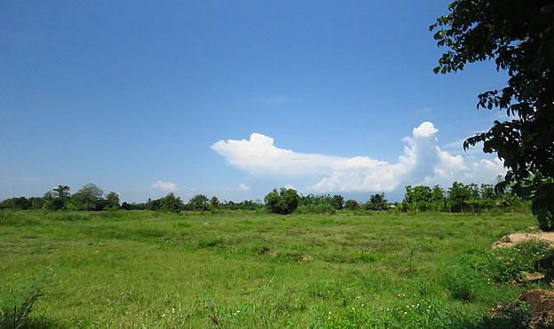 5 Rai land with views for sale in Doi Saket
