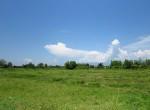 land-sale-chiangmai-ls81 (8)