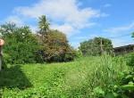 land-sale-chiangmai-ls82 (3)