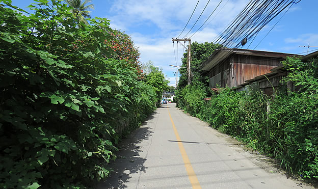 2 Rai land for sale in Chiang Mai city district