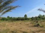 land-sale-chiangmai-ls84 (10)