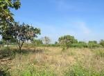 land-sale-chiangmai-ls84 (7)