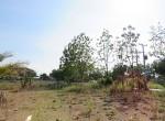 land-sale-chiangmai-ls84 (8)