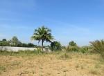 land-sale-chiangmai-ls84 (9)