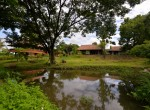 house-pool-sale-chiangmai-hs389 (43)