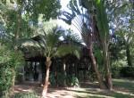 house-pool-sale-chiangmai-hs398 (8)