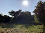 land-sale-chiangmai-ls90 (2)