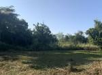 land-sale-chiangmai-ls90 (3)