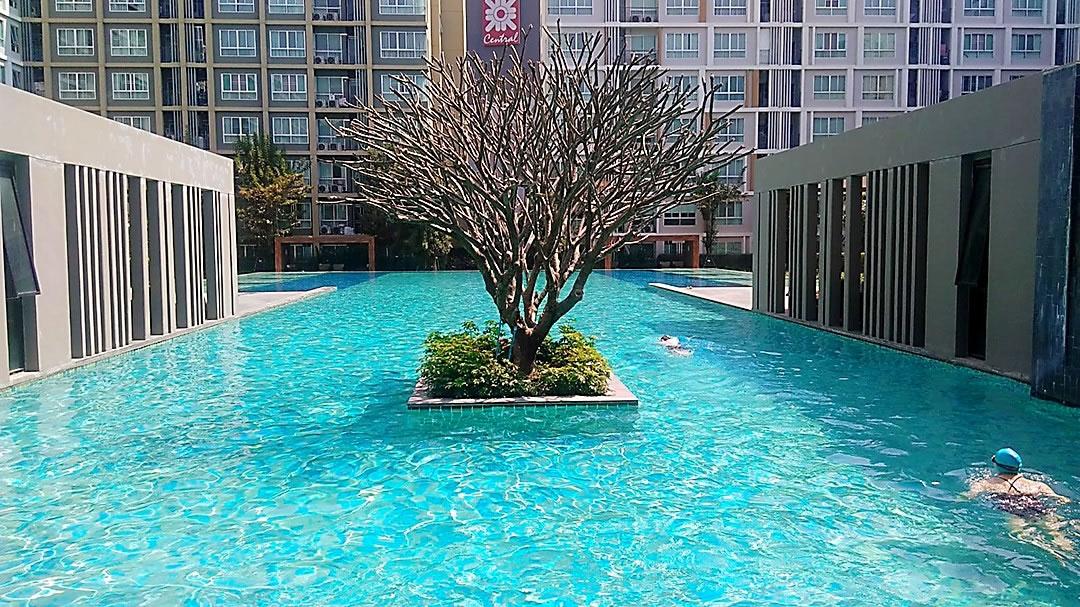 Condo rent Chiang Mai