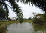 house_land_lake_sale_chiang_mai_doi_saket (5)