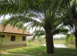 house_land_lake_sale_chiang_mai_doi_saket (9)