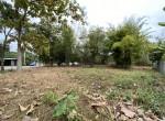 land_sale_chiang_mai_ls92 (1)