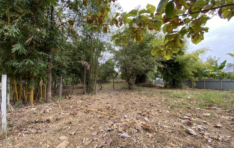 land sale chiang mai hang dong nam phrae